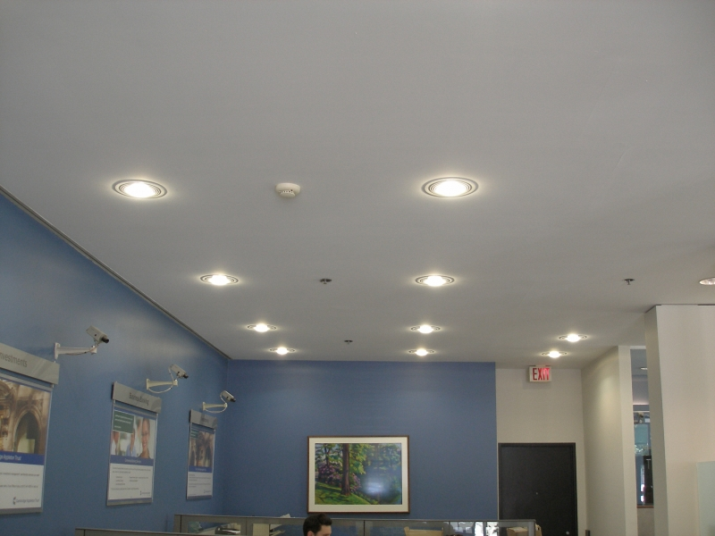 Silescent LED Lighting -